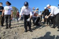 CARETTA CARETTA - Kazanli Sahilindeki Caretta Yuvalama Alanlari Temizlendi