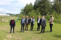 İMALATHANE - Safranbolu Kaymakami Türköz'den Kiriklar Köyü Ziyareti