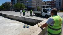 KORDON - Çanakkale Bogazi'nda Bugün De Müsilaj Temizligi Devam Ediyor