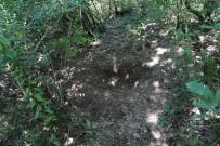NECATI ÇELIK - Esinin Yegeni Tarafindan Öldürülen Kadinin Gömüldügü Yer Görüntülendi