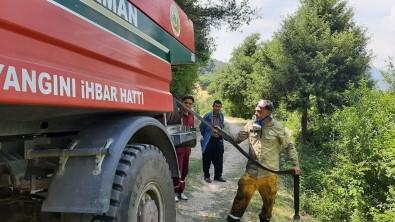 Osmaniye'de Çikan Orman Yangini Büyümeden Söndürüldü