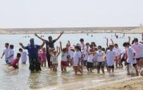 TİYATRO - Haydi Çocuklar Denize