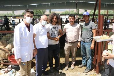 Baskan Öztürk'ten Kurban Pazari Ziyareti