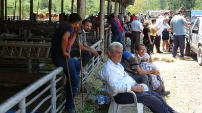 Karabük'te Hayvan Pazarinda Arife Günü Hareketliligi