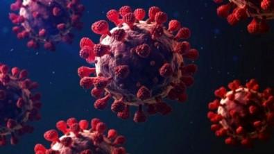 25 Temmuz koronavirüs tablosu açıklandı