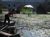 Ispanyol Ögretim Görevlisi Dogaseverlerle Tunca Nehri'nde Temizlik Yapti