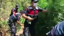 Manisa'da 3 Hektarlik Alanda Etkili Olan Orman Yangini Kontrol Altina Alindi