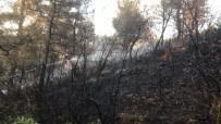 Soma'daki Orman Yangini Kontrol Altina Alindi
