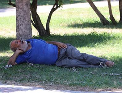 Adana'da bunaltan sıcak! Ağaç gölgesinde uyuyan vatandaşı öldü sandılar!