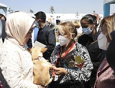 Emine Erdoğan ses telleri kesik köpeği Yonca Evcimik'e emanet etti!