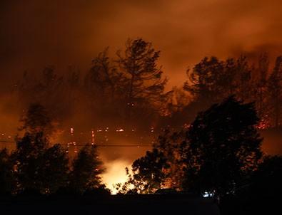 Manavgat'taki orman yangılarıyla ilgili soruşturma başlatıldı!