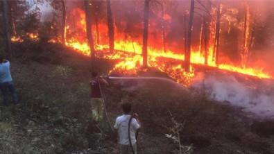 Bodrum ve Didim'de de orman yangını başladı!