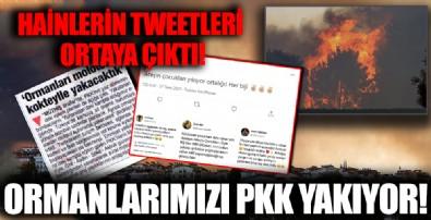 Manavgat'taki yangınlar PKK'nın sabotajı mı?