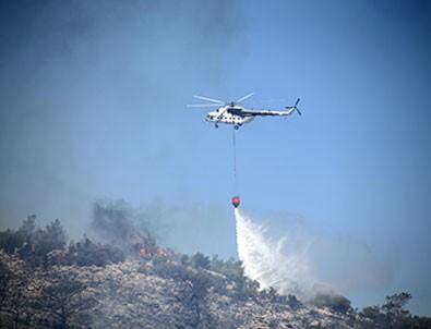 Mersin ve Muğla'daki orman yangınları ile ilgili soruşturma başlatıldı!