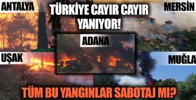 Türkiye yanıyor! Antalya'dan sonra o şehirlerde de yangın çıktı