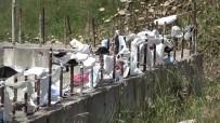 ADNAN MENDERES - (ÖZEL) Arnavutköy'de Pandemi Hatira Duvari