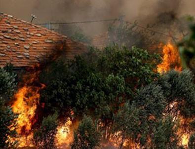Orman yangınlarıyla ilgili raporda 'kasıt' ve 'sabotaj' vurgusu!