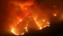 BAHÇEŞEHİR YANGININDA CAN KAYBI VAR MI? - Son Dakika Bahçeşehir Yangını Söndürüldü mü? Bahçeşehir Yangınında Can Kaybı Var mı? Bahçeşehir Yangınından Görüntüler