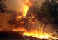SON DAKİKA İSTANBUL'DA YANGIN - Son Dakika Esenler'de Yangın Çıktı!  Esenler'de Yangın Söndürüldü mü? Esenler Yangınında Can Kaybı Var mı?