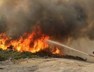 Türkiye genelindeki yangınlarda son durum!