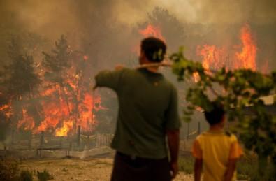 Bakan Pakdemirli'den son dakika açıklaması: 98 yangından 88'i kontrol altında