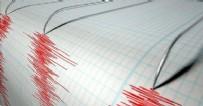 Muğla'da korkutan depremler!