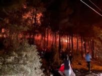 FETHİYE'DE YANGIN KONTROL ATINA ALINDI MI? - Fethiye Orman Yangını Son Durum Fethiye'de Yangın mı çıktı? Fethiye Yangınında Can Kaybı Var mı? Fethiye Yangını Son Dakika