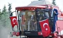 KALİFİYE ELEMAN - Vali Biçerdöverle Bugday Hasadi Yapti