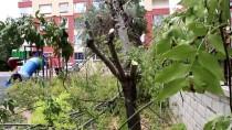 MİMARİ - Konya'da 'Ilgin Is Hani Projesi' Hayata Geçiyor