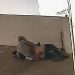 POLİS EKİPLERİ - Köpege Tecavüz Etti, Serbest Kaldi