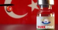 YERLİ AŞI - Yerli aşı TURKOVAC'tan sevindiren haber!