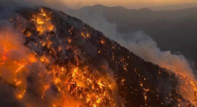 Bakan Pakdemirli duyurdu: 119 yangın kontrol altına alındı
