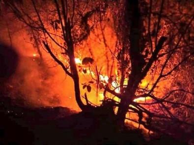 Bir yangın da Samsun'da! 7 hektarlık alan zarar gördü