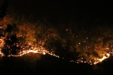 Terör örgütü PKK yangınları üstlendi ama CHP'den hala ses yok!