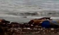 Bozkurt'ta bilanço ağırlaşıyor! Kıyıya vuran cansız bedenler var!