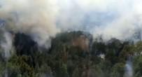Antalya'da Orman Yangini Basladi