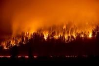 Bir aydır devam ediyor: ABD, 'kriz modu'nda! 210 bin hektar alan küle döndü