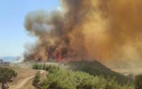 ADANA'DA YANGIN - Adana'da bir yangın daha!