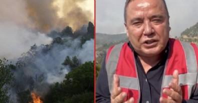 Bakan Mevlüt Çavuşoğlu'ndan Muhittin Böcek'e tepki: Türkiye'yi panikletmesi doğru değil kendisine hiç yakışmadı