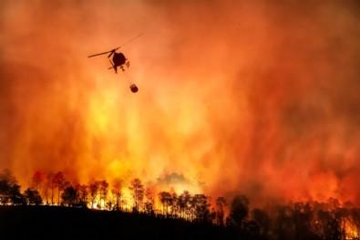 İşte orman yangınlarındaki son durum! Bakanlar tek tek açıkladı...