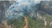 Köyceğiz'de orman yangını!
