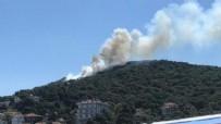 Heybeliada'daki yangında insan zinciri oluşturuldu!