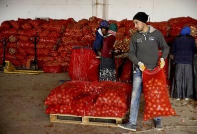 Sebze ve meyve fiyatında manipülasyona geçit yok! Skandal görüntülerden sonra bakanlık harekete geçti...