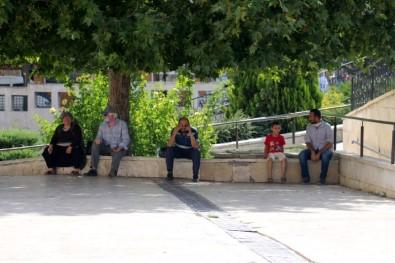 Sivas'ta Rekor Sicaklik