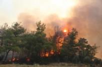 HANGİ ORMAN YANGINLARI DEVAM EDİYOR? - Orman Yangınlarında Son Durum Nedir? Hangi Yangınlar Devam Ediyor?