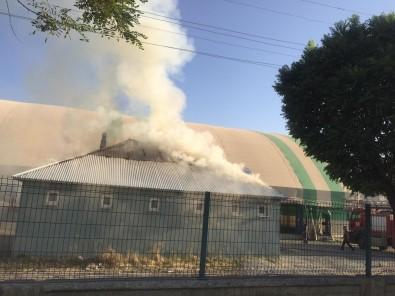 Agri'da Yüksek Gerilim Hattinda Meydana Gelen Patlama Yangina Neden Oldu