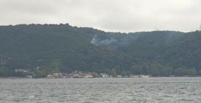 Beykoz'da korkutan yangın!