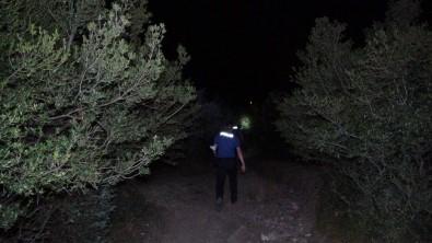 Orman Yangini Sanildi, Çiftlik Yangini Çikti