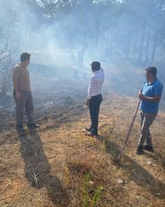 Adana'da Çikan Orman Yangini Büyümeden Kontrol Altina Alindi