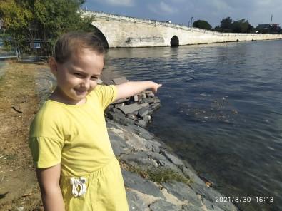 (Özel) Küçükçekmece Gölü'ndeki Kirlilige Karsi Tepkisi Gündem Oldu